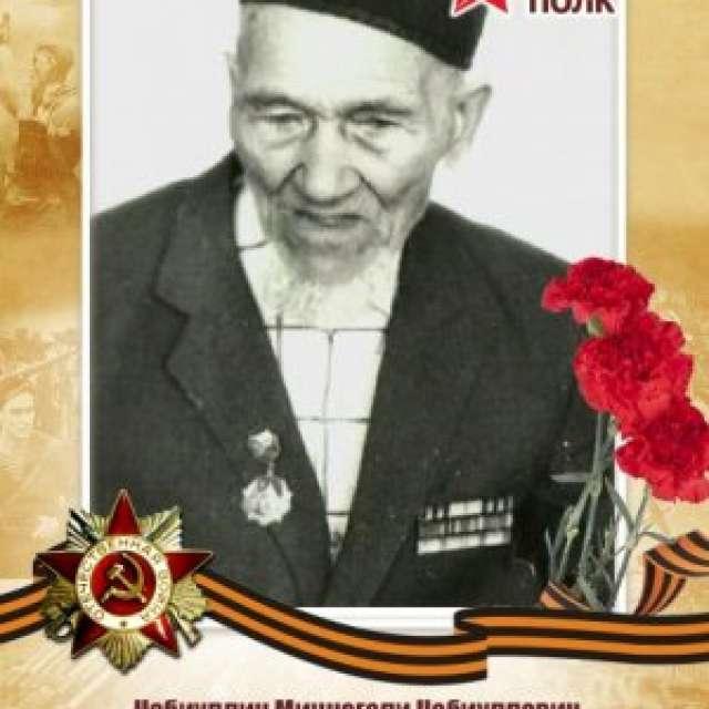 Набиуллин Миннегали Набиуллович