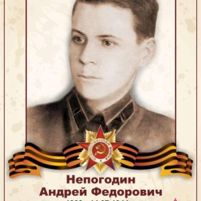 Непогодин Андрей Федорович