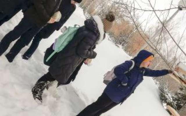 Клуб «Мои Челны»: акция «Покормите птиц зимой!»